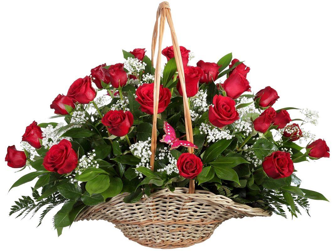 Поздравительные прикольные, открытки красивые с цветами